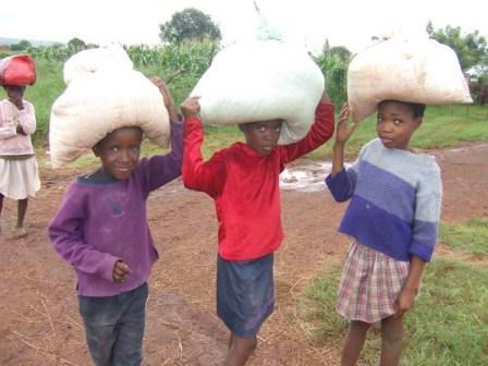 Swazi children