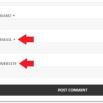 Remove email and website from WordPress comment