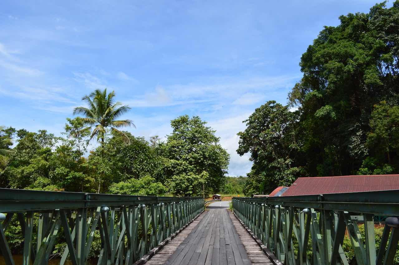 Mulu National Park 3-Day UNESCO Luxury Travel Guide   Borneo, Malaysia