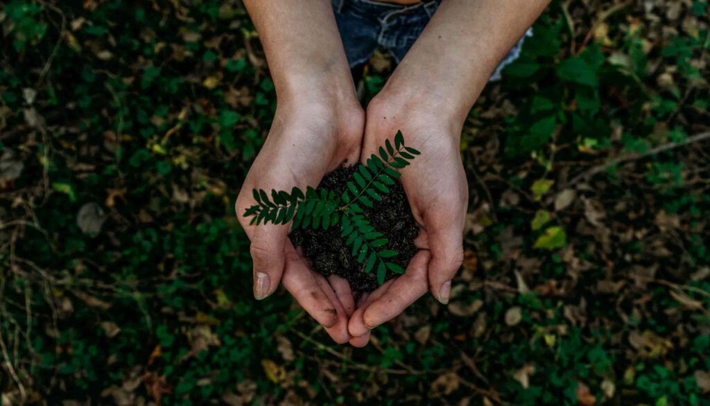 Sustainability Made Simple: What Is Earth Day?