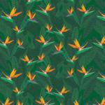 Bird of Paradise Digital Illustrated Pattern