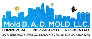 Picture link to moldbadmold.com