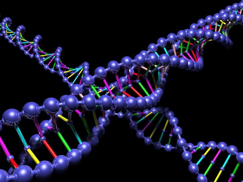 DNA purple pic