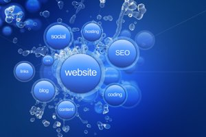 SEO is our expertise