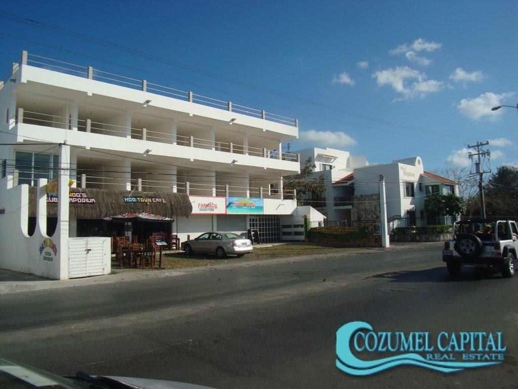 12.- Desarrollo Albatros - Principal Avenue