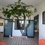 13.- Condo Casa Blanca 8 - Covered Porch Area