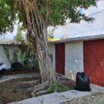 1a.- Casa Tomas - Entrance Door & Gate