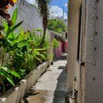 32.- Casa Tomas - Side Corridor green area