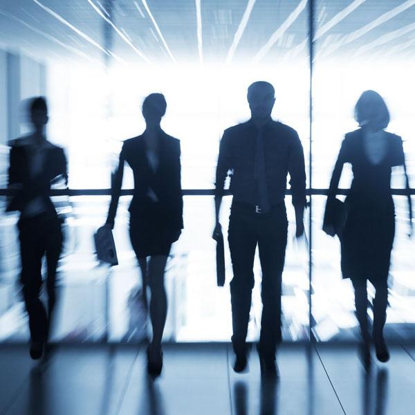 Leadership Development - Executive Hiring and Assessment