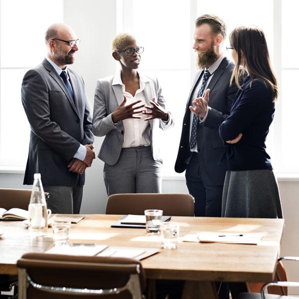 Organization Development Consulting - Leadership Team Alignment