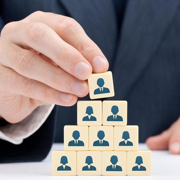 Leadership Development - Leadership Strategy and Leadership Development
