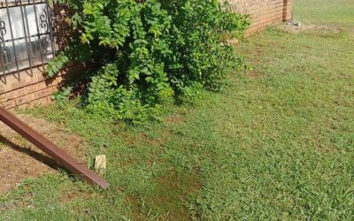 Heavy Rain Causes Significant Foundation Problems