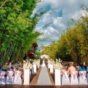 Intimate Weddings of Tampa