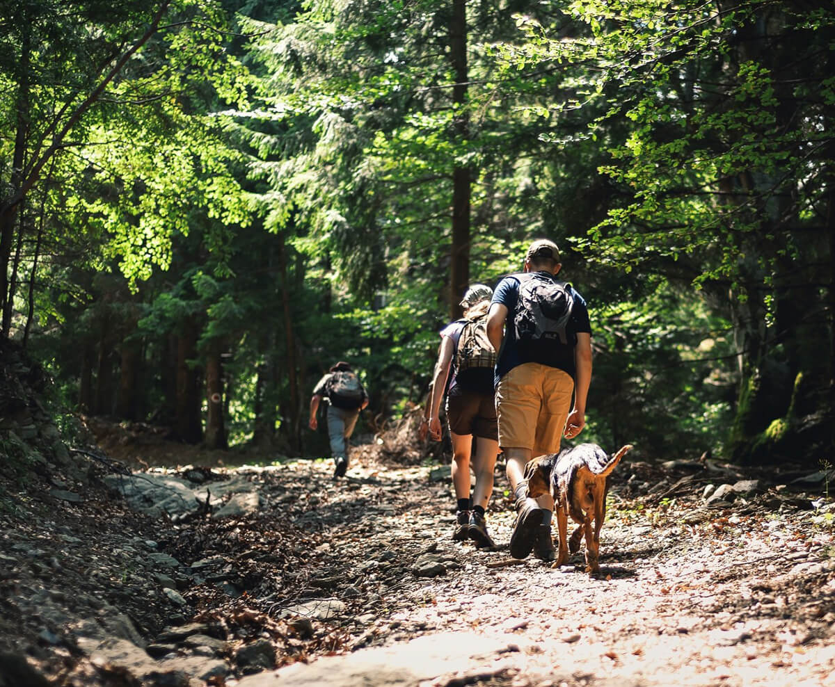 Summer Social Distancing Activities in Colorado