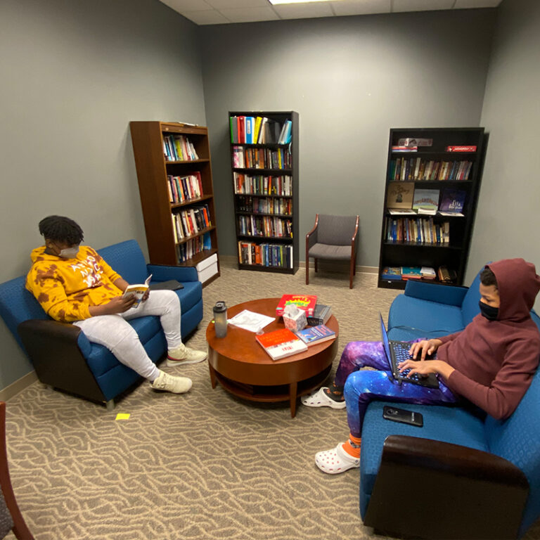 Two students in the library working.