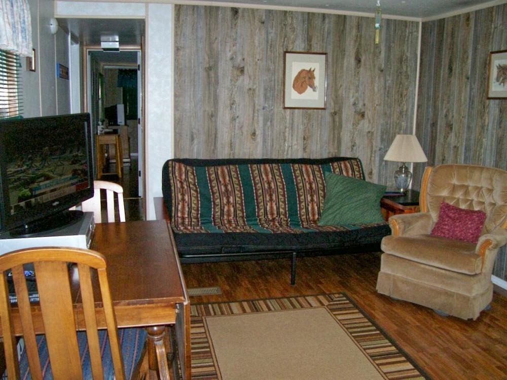 Ozark retreat living room