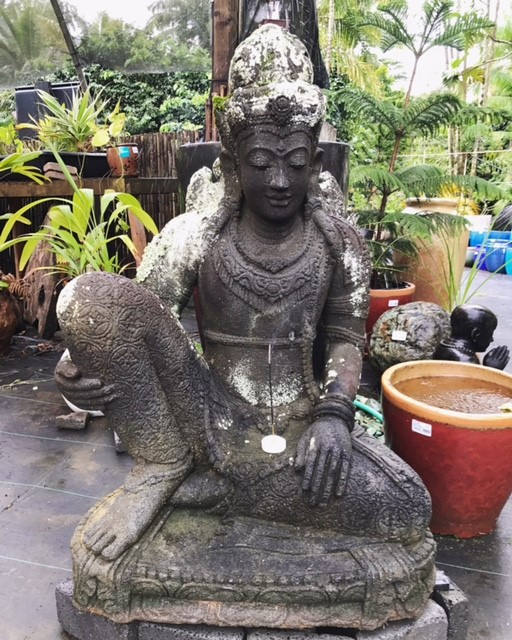 The Ancient Wisdom in your Garden