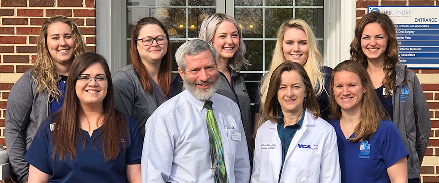 Team of Veterinarians and Staff.