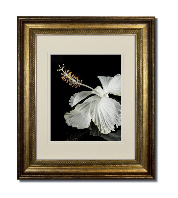 Champagne Bead Frame with Soft White Double Mat
