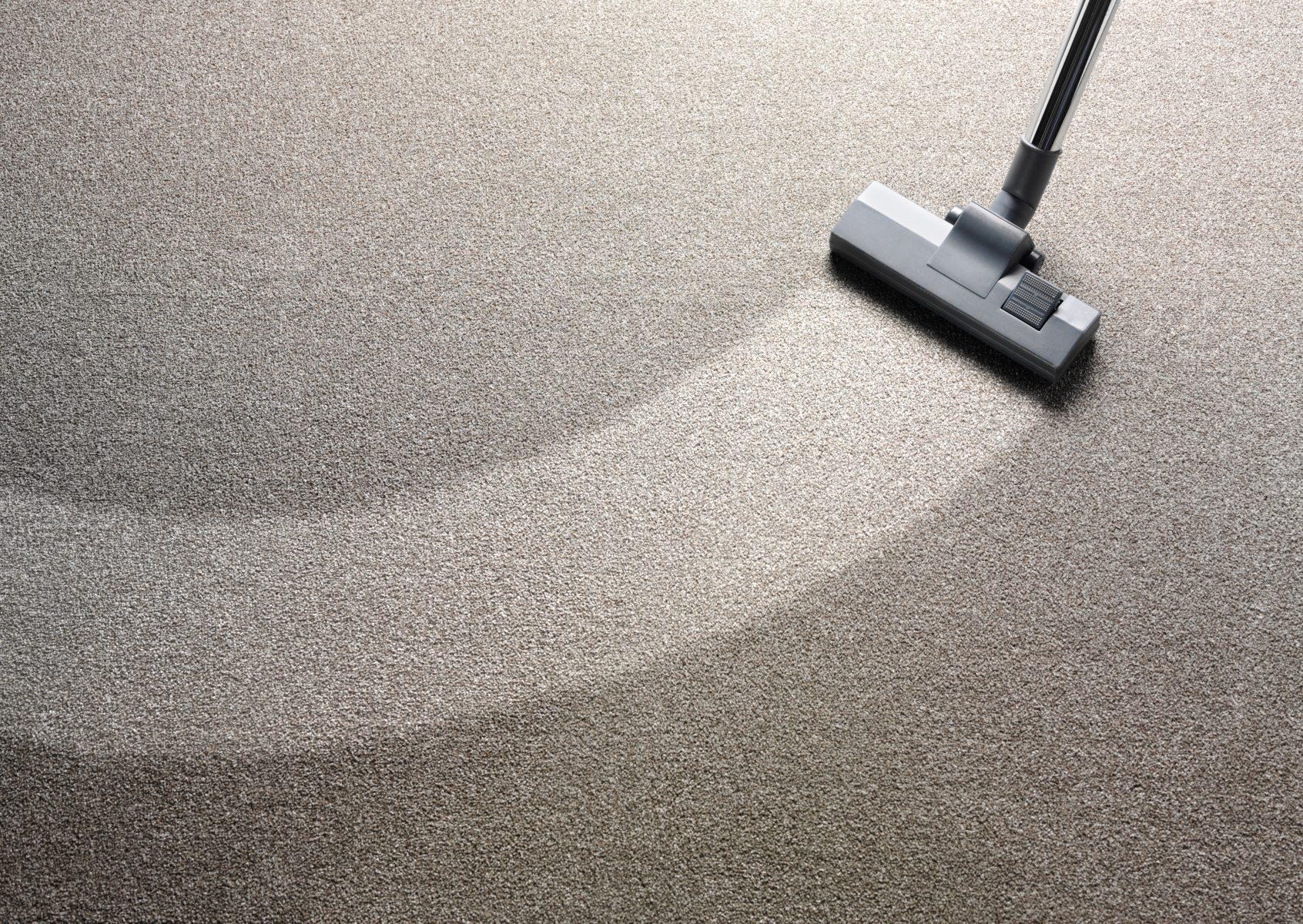 hwo to dry wet carpet