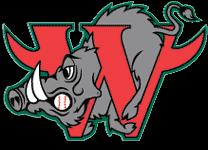Webster Warthogs