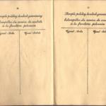 Banner_Chaja - Polish Passport (8)