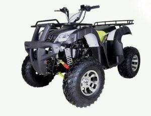 bull 200cc atv