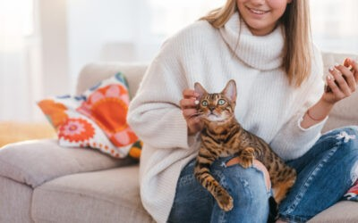 Got Some Pets? HVAC Maintenance Tips for Pet Owners Like You