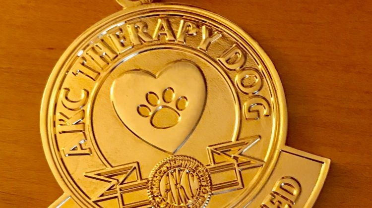 Title Your Therapy Dog