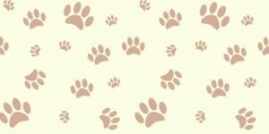 background-with-dog-paw-print-and-bone-vector-1360415