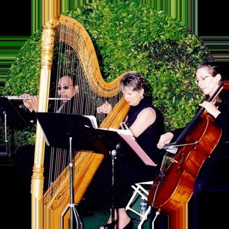 flute cello harp trio