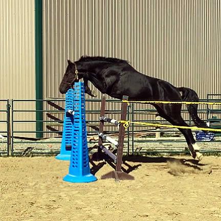Drekkar (Mushu) is a jumping machine