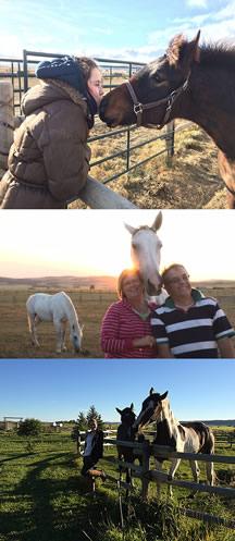 welovehorses