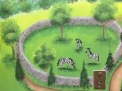 Zoo zebras