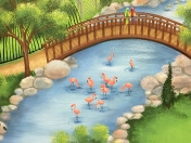 Zoo flamingos
