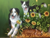 Animals - dogs