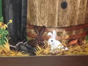 Animals bunnies barrel