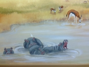 Jungle - Safari hippos