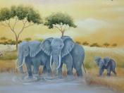 Jungle - Safari elephants