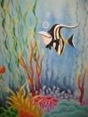 Ocean - Nemo angelfish