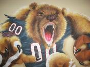 Sports - Bear