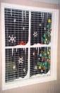 Windows -christmas-tree-in-window