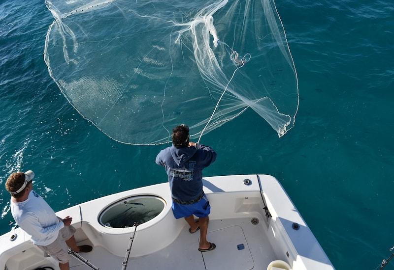 islamorada fishing charters