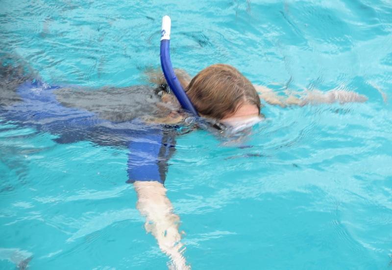 Islamorada snorkeling