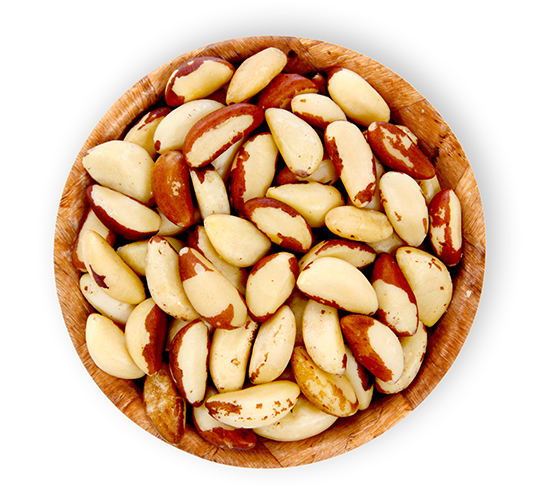 Brazil Nut Bowl