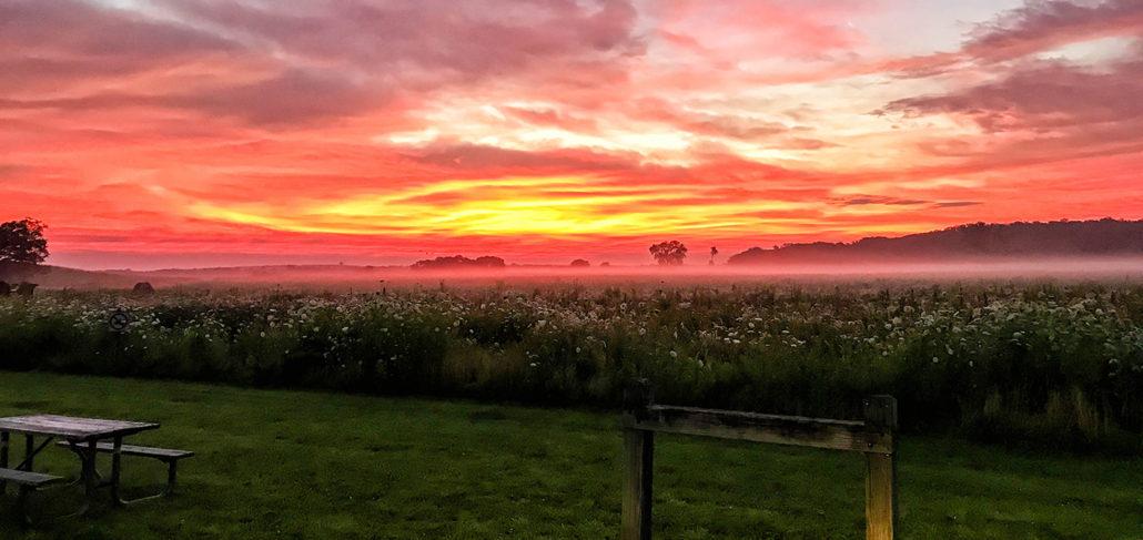 Beautiful Local Sunset