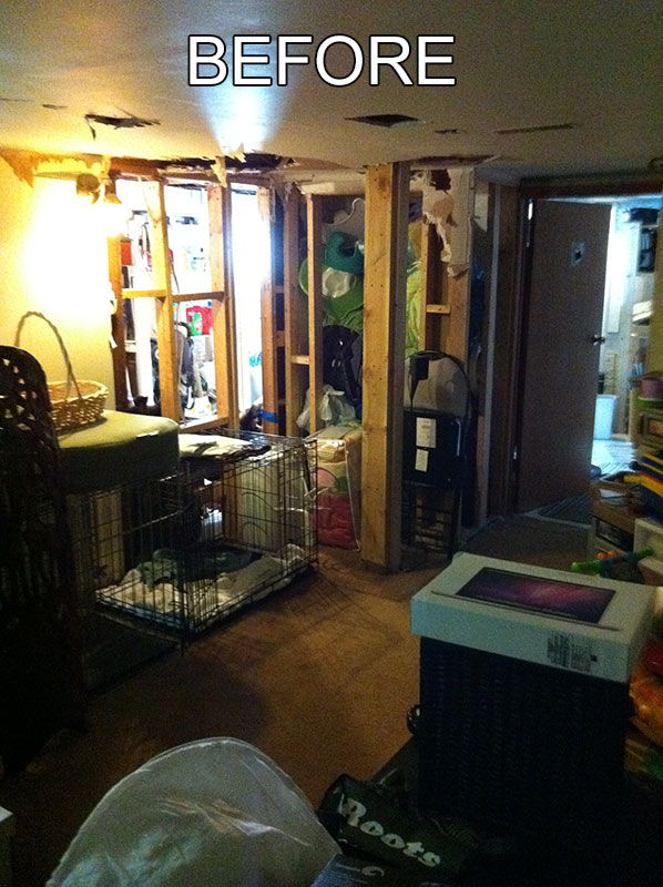 HollywoodAve-basement