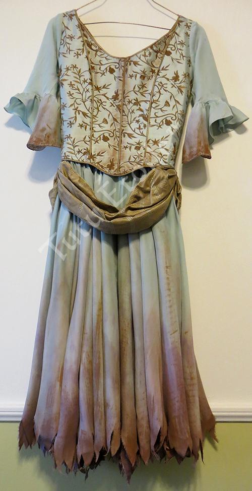 Cinderellas Kitchen Dress