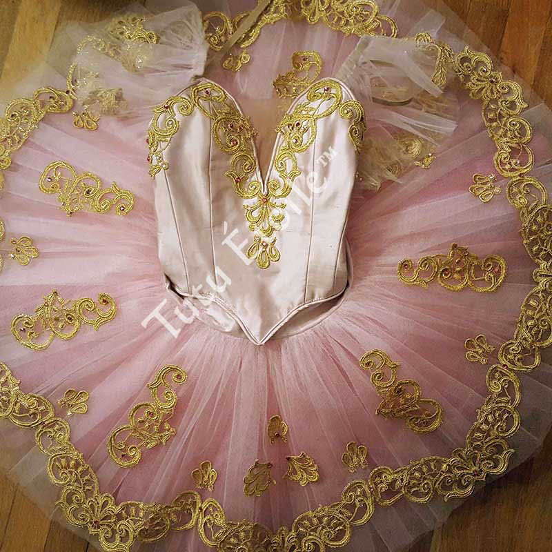 Rosette and Gold Ombre