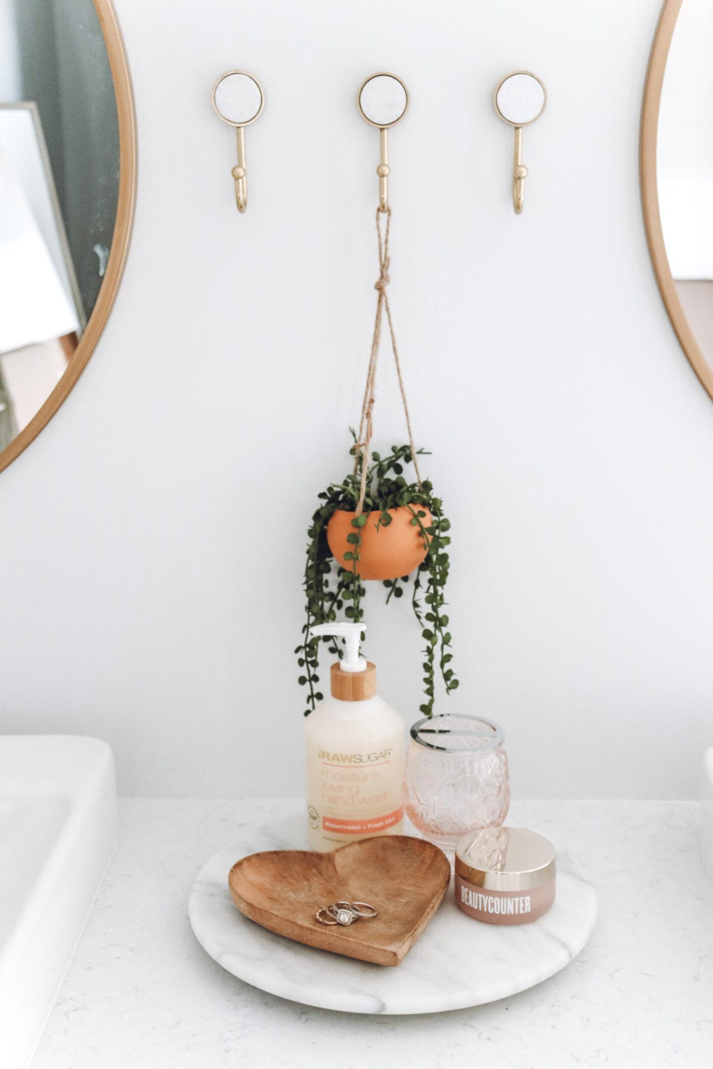 hanging plant Master Bathroom Remodel